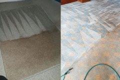 carpet-img-3